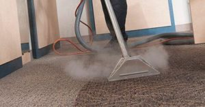 carpet cleaning flint MI